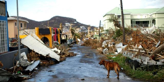 Puerto Rico – Disaster Relief Medical Relief & Dental Relief